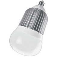 Power Zone O-BB30 Bulb Big Led 2570L Edison Base