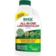 Central Garden 100523495 Image Killer Weed All-N-1 Conc 24 Ounce
