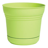 Bloem SP0525 Planter 5In Saturn Honey Dew