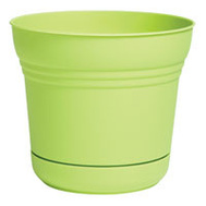 Bloem SP1025 Planter 10In Saturn Honey Dew
