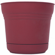 Bloem SP1212 Planter 12In Union Red Saturn