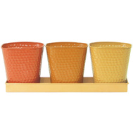 Robert Allen MPT01442 Indoor Herb Garden Planter Set 4 Piece Butterscotch