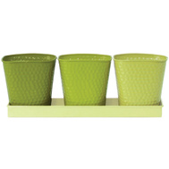 Robert Allen MPT01443 Indoor Herb Garden Planter Set 4 Piece Limelight