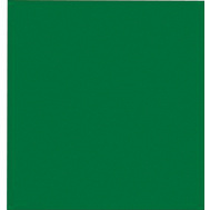 Santas Forest 68024 Tissue Paper Green 8 Count