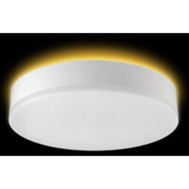 ETI Lighting 56546103 Light Ceiling Fmnt 5000K 11In