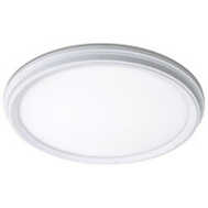 ETI Lighting 56572113 Light Surface Mount White 11In