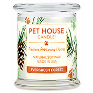 American Distribution 67321 8.5 Ounce Evergreen Forest Candle
