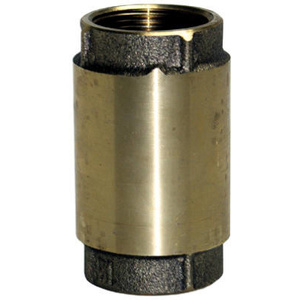 Water Source CV-200NL 2 Inch BRS Check Valve