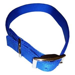 Coastal Pet 02901 B BLU24 1 Inch By 24 Inch Blue Double Ply Nylon Dog Collar