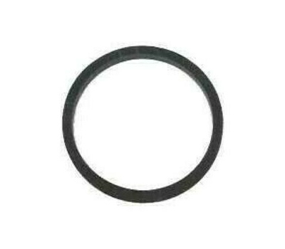 Chapin 6-3382 Compression Sprayer Cover Gasket