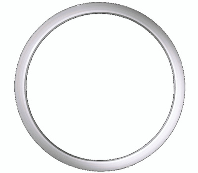 Danco 36661B #26 Poly Slip Joint Washer