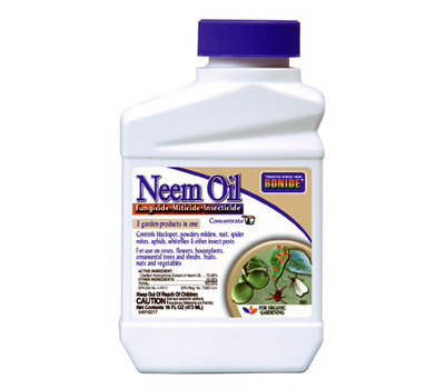 Bonide 024 Oil Neem Pint