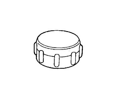 Plumb Pak PP850-68 3/4 Inch Hose Cap With Washer