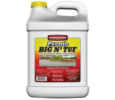PBI Gordon 9571127 2.5gal Big Tuf Killer