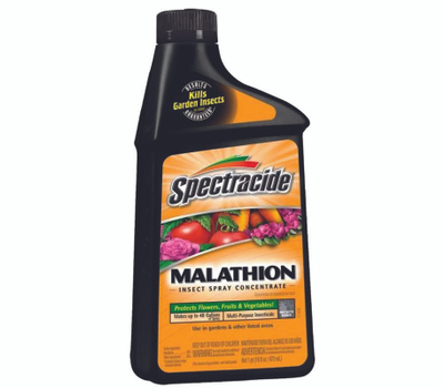 Spectrum 60900 Spectracide Malathion Concentrate 16 Ounce