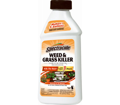 Spectrum HG-66001 Spectracide Killer Weed/Grass Conc 16 Ounce