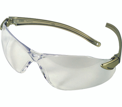 Safety Works 10083074/3090 Clear/Dark Blue Safety Glasses Style 1019