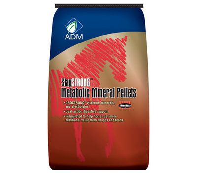 ADM Animal Nutrition 80935AAA25 40 Pound Stay Strong Pellet