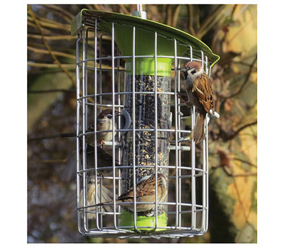 World Source NC006 Roundhaus Bird Feeder Squirrel Proof 1.6 Pound Seed Capacity Lime Green