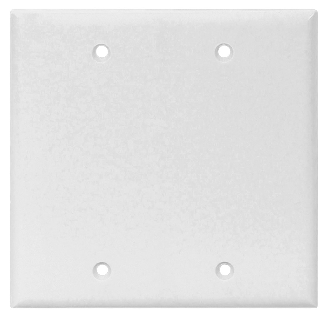 Blank Switch Plate Pleasing Cooper Wiring 2137Wbox 2 Gang Standard Blank Wall Plate White Decorating Inspiration
